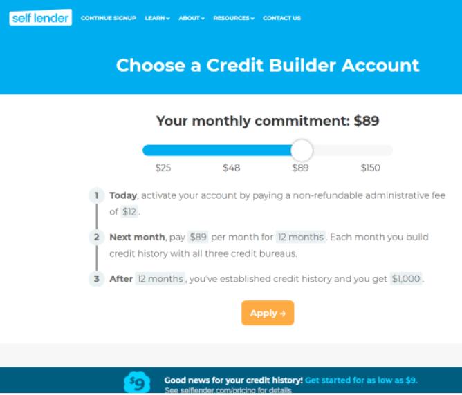 self lender loan amount